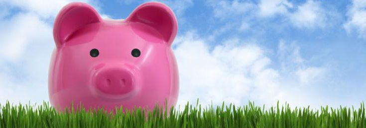 The type of loans offered by piggy guarantor